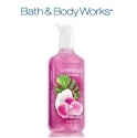 Bath& Body Works: 6 Hand Soaps for $24