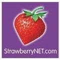 StrawberryNET 草莓网:所有化妆品可享额外10% OFF 优惠