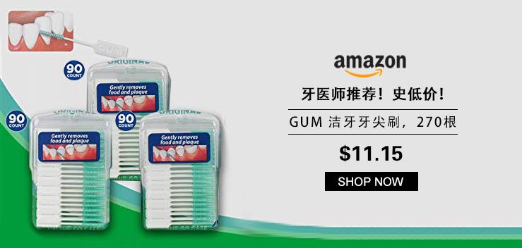 牙医师推荐!史低价!GUM 洁牙牙尖刷,270根